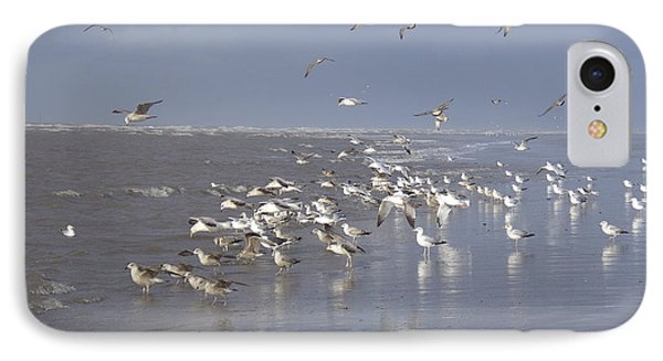 Birds At The Beach IPhone Case