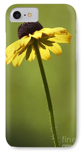 Black-eyed Susan Phone Case by Tony Cordoza