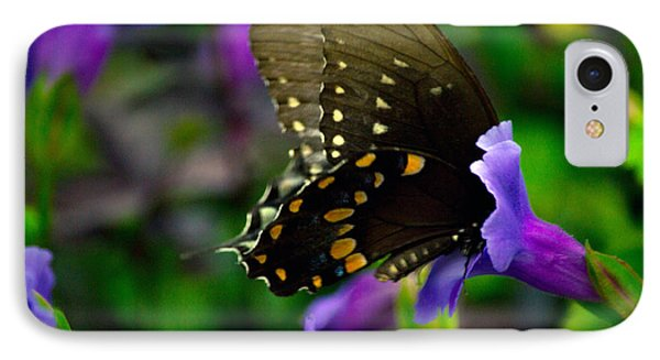 Black Swallowtail IPhone Case by Angela DeFrias