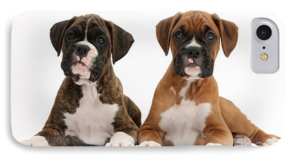 Boxer Puppies Phone Case by Mark Taylor