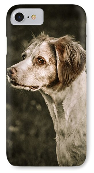 IPhone Case featuring the photograph Brittany by Bradley Clay