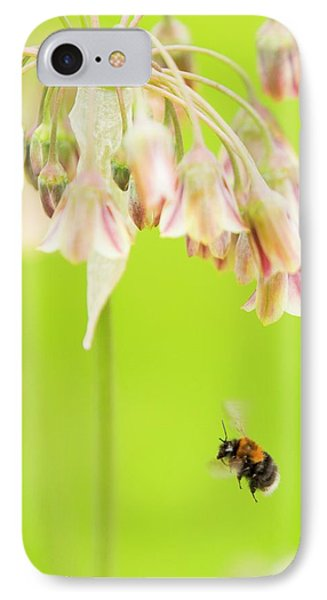 Bumble Bee Gathering Pollen IPhone Case