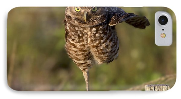Burrowing Owl Photograph IPhone Case by Meg Rousher
