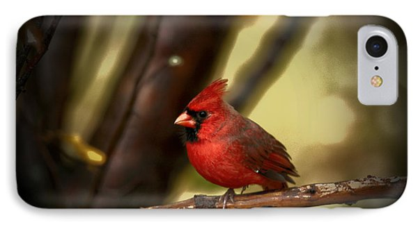 Cardinal Pose Phone Case by Karol Livote