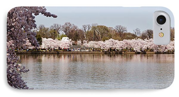 Cherry Blossom Trees Near Martin Luther IPhone Case by Panoramic Images