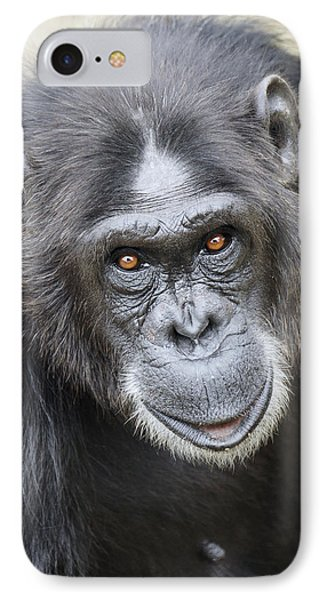 Chimpanzee Portrait Ol Pejeta IPhone 7 Case by Hiroya Minakuchi
