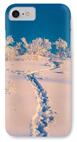 Cold Winter In Lapland Sweden IPhone Case by Panoramic Images