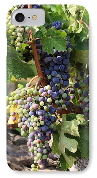Colorful Grapes Phone Case by Carol Groenen