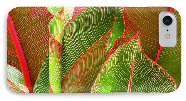 IPhone Case featuring the photograph Colorful Leaves by Ranjini Kandasamy