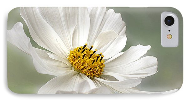 Cosmos Flower In White IPhone Case by Kaye Menner