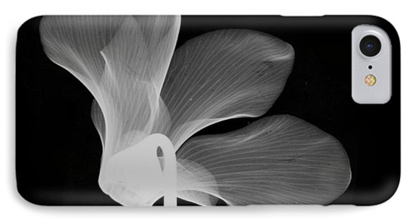 Cyclamen Flower X-ray Phone Case by Bert Myers