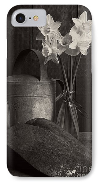 Daffodils IPhone Case by Edward Fielding
