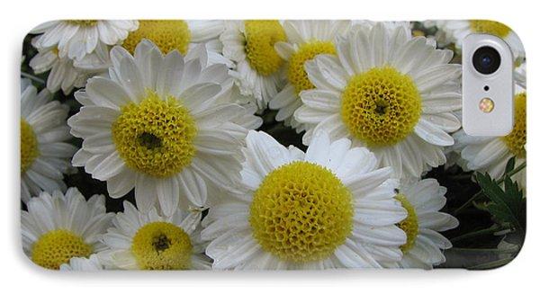 Daisy Like Flowers 1 IPhone Case