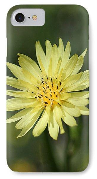 Dandelion Phone Case by Ester  Rogers