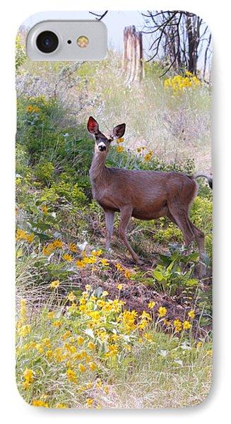 Deer In Wildflowers IPhone Case by Athena Mckinzie
