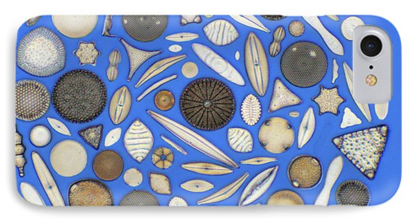 Diatoms Phone Case by Kent Wood
