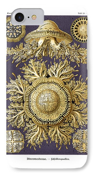 Discomedusae IPhone Case by Ernst Haeckel