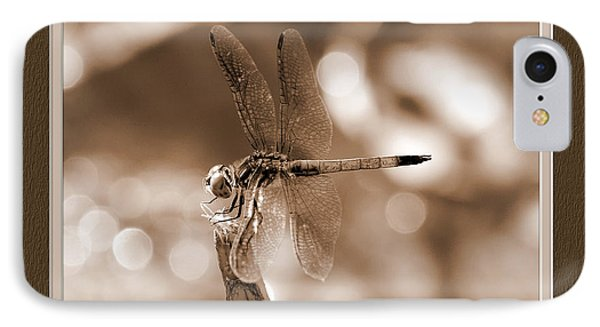Dragonfly Elegance IPhone Case by Charles Feagans