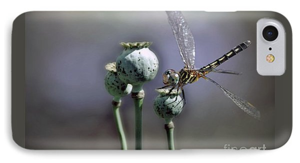 IPhone Case featuring the photograph Dragonfly by Savannah Gibbs