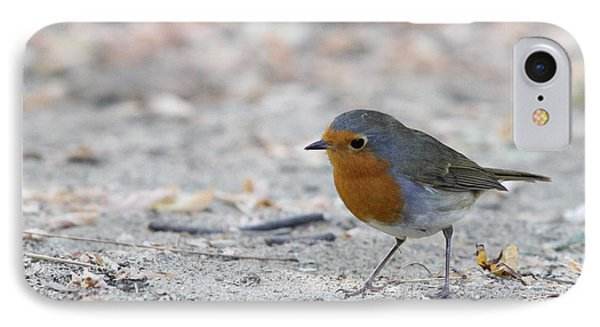 IPhone Case featuring the photograph European Robin - Erithacus Rubecula by Jivko Nakev