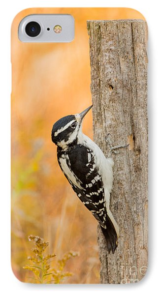 Female Hairy Woodpecker Phone Case by Linda Freshwaters Arndt