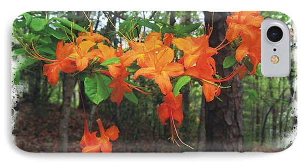 Flame Azalea IPhone Case