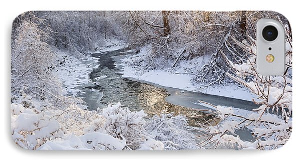 Forest Creek After Winter Storm IPhone Case by Elena Elisseeva