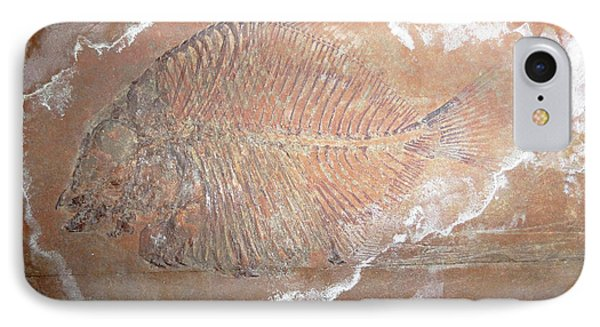 Fossil Fish IPhone Case