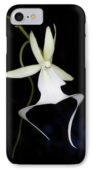 Ghost Orchid In Bloom, Polyrrhiza IPhone Case by Maresa Pryor