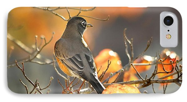 IPhone Case featuring the photograph Glowing Robin by Nava Thompson