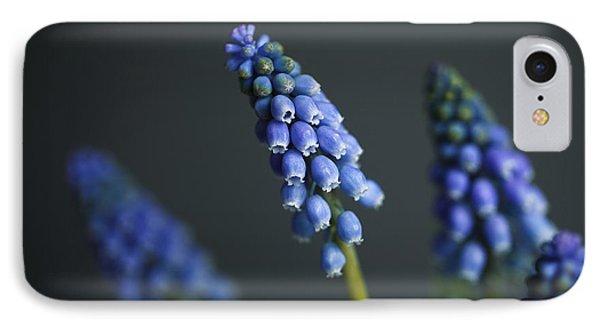 Grape Hyacinth IPhone Case by Nailia Schwarz