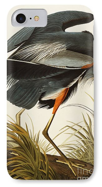 Great Blue Heron IPhone Case by John James Audubon