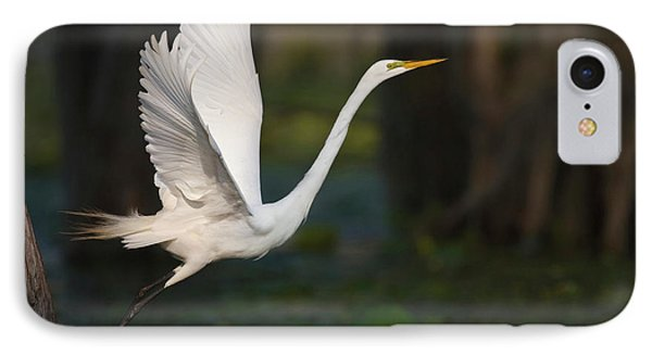 Great Egret (ardea Alba IPhone Case