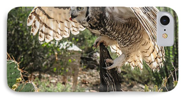 Great Horned Owl IPhone Case by Tam Ryan