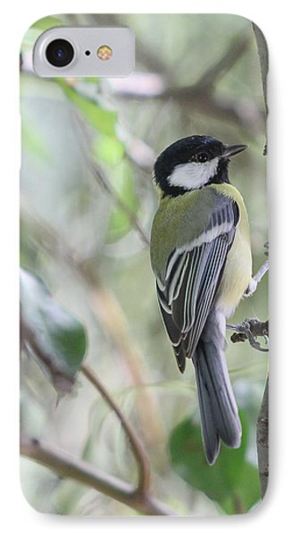 IPhone Case featuring the photograph Great Tit - Parus Major by Jivko Nakev