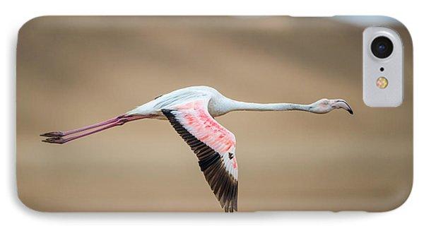 Greater Flamingo Phoenicopterus Roseus IPhone 7 Case by Panoramic Images