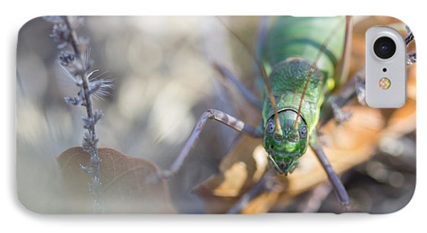 IPhone Case featuring the photograph Green Grasshopper Ephippiger by Jivko Nakev