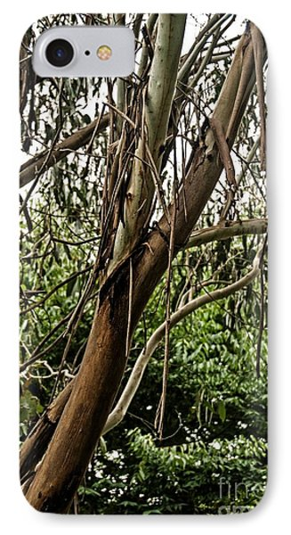 Gum Tree In Grunge IPhone Case