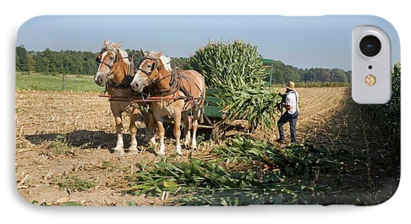 Harvest On An Amish Farm IPhone Case by Jim West