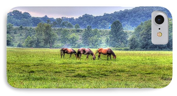 Horses In A Field IPhone Case by Jonny D
