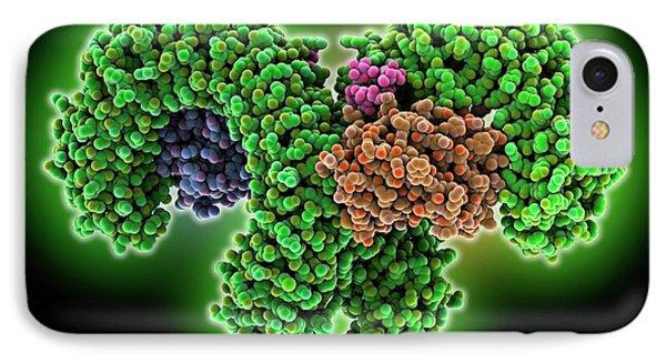 Human Pathogen Recognition Molecule IPhone Case by Laguna Design