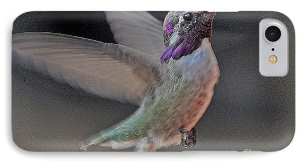 Hummingbird In Flight IPhone Case by Jay Milo