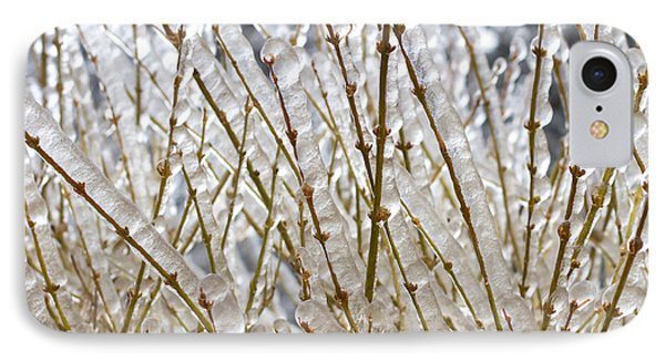 Ice On Branches Phone Case by Blink Images