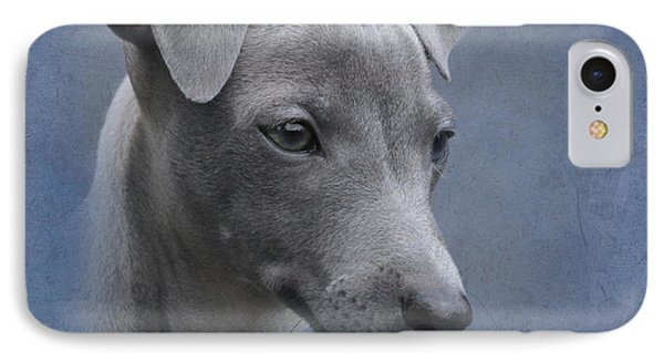 Italian Greyhound Puppy Phone Case by Angie Vogel