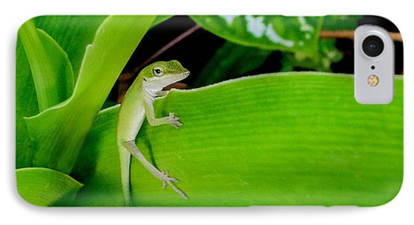 IPhone Case featuring the photograph It's Easy Being Green by TK Goforth