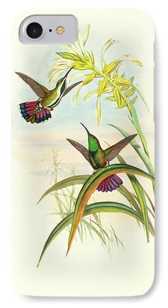 John Gould And H.c IPhone Case by Litz Collection