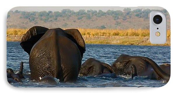 IPhone Case featuring the photograph Kalahari Elephants Crossing Chobe River by Amanda Stadther