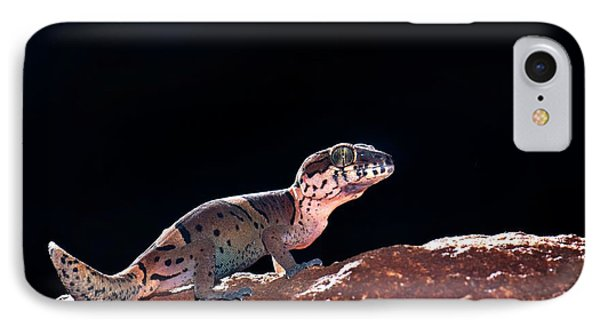 Kollegal Ground Gecko IPhone Case by K Jayaram