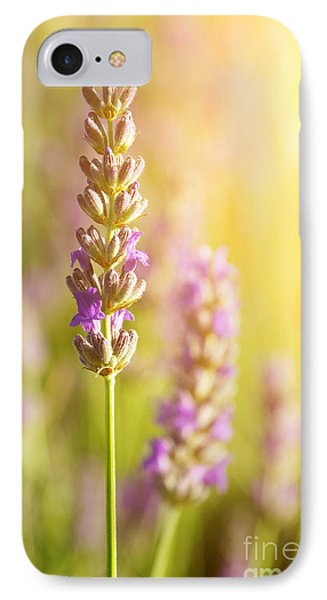 Lavender Flowers IPhone Case by Carlos Caetano