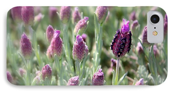 Lavender Standout IPhone Case by Carol Groenen